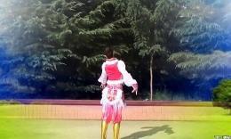 天姿广场舞2014年34期《草原天堂》正反面演示