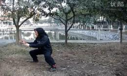 学练陈氏太极拳74式