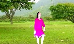 172 天使之翼广场舞 月光姑娘(原创附教学)