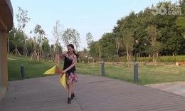 美久广场舞.筷子舞--《原香草》分解教材和背面