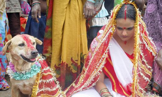人狗结婚!18岁女子与流浪狗结婚